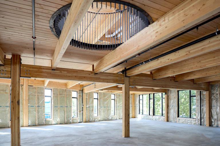 Cedar Speedster mass timber frames
