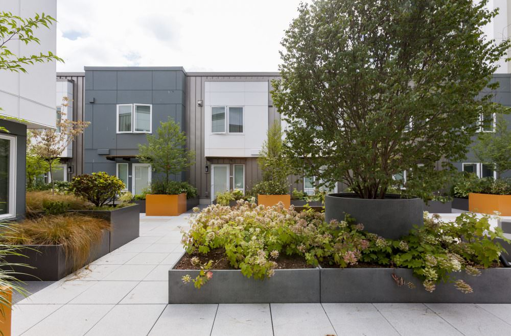 Raven Terrace at Yesler Terrace Landscape Architecture