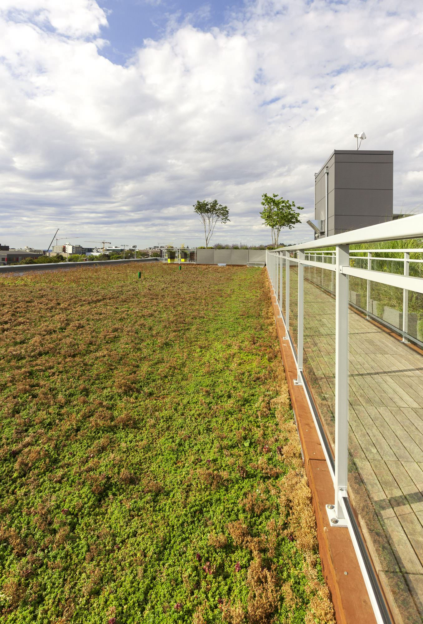 Sunset Electric Landscape Architecture