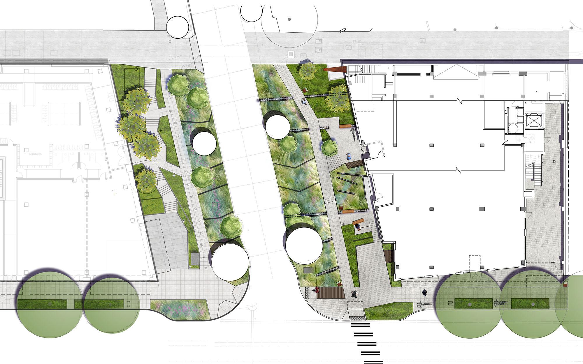 Aurora Bridge Swales Landscape Architecture